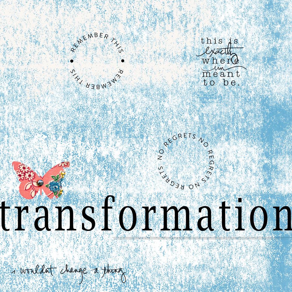 Transformation-2014