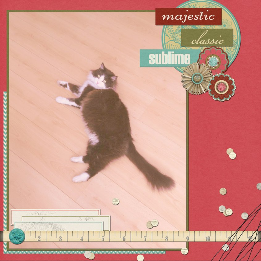 majestic-sailor